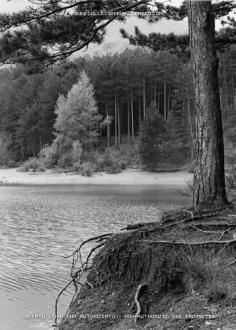 """""""Lago di Suviana"""" - Foto di Maurizio Signorini"""